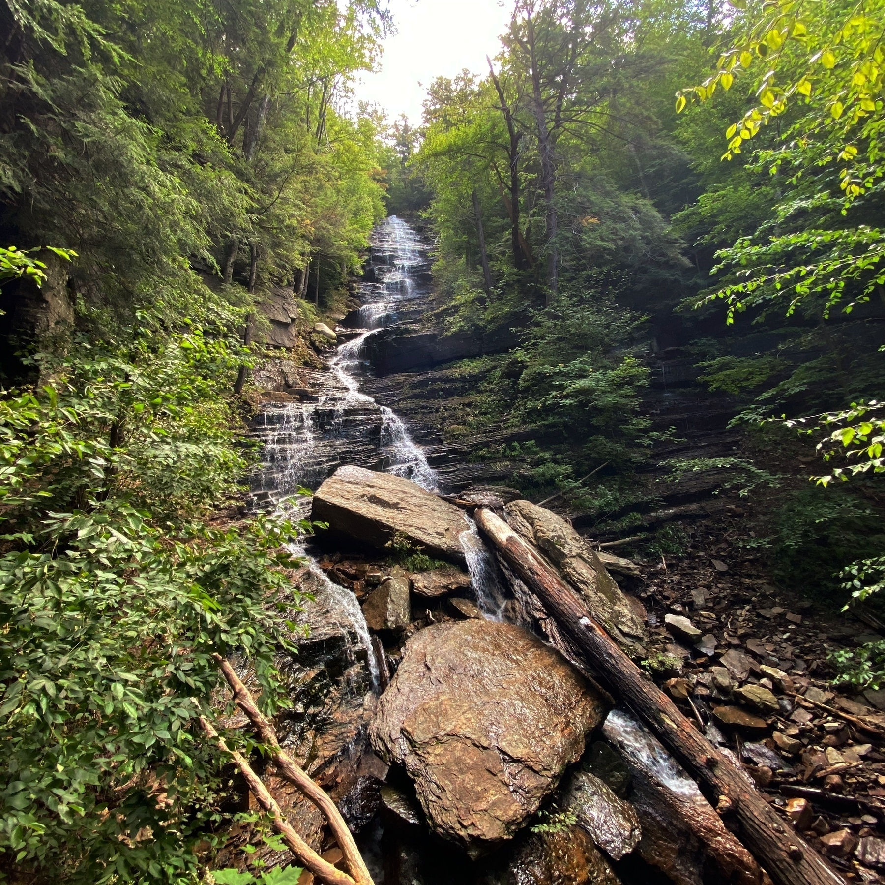 A tall waterfall comes down over rocks, with woods on both sides
